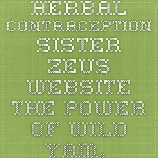 Herbal Contraception Sister Zeus Website The Power Of Wild Yam