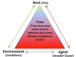 The Epidemiology triad consists of an external agent and a host and an environment in which the host