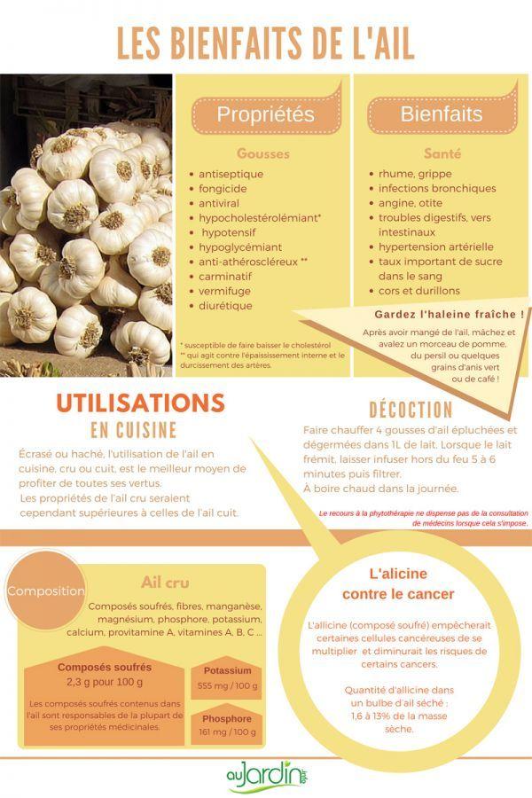 Les bienfaits de l'ail | Ail bienfaits, Les super aliments et Alimentation et santé