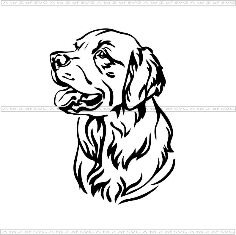 Pin On Clipart Design Images