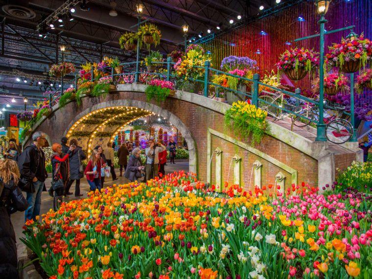 Get Ready for the 2020 PHS Philadelphia Flower Show