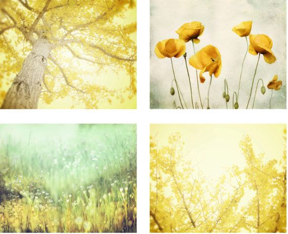 Nature Photography Set of 4 Four Prints, Lemon Yellow Wall Art, Aqua ...