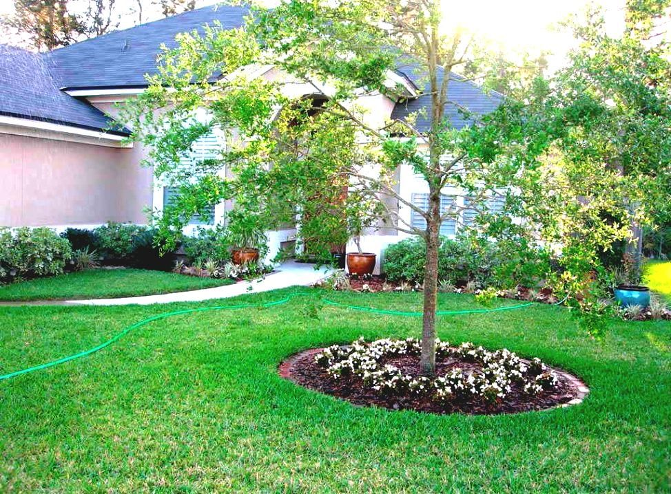 Modern Front Garden Ideas Australia 4007 (With images ...