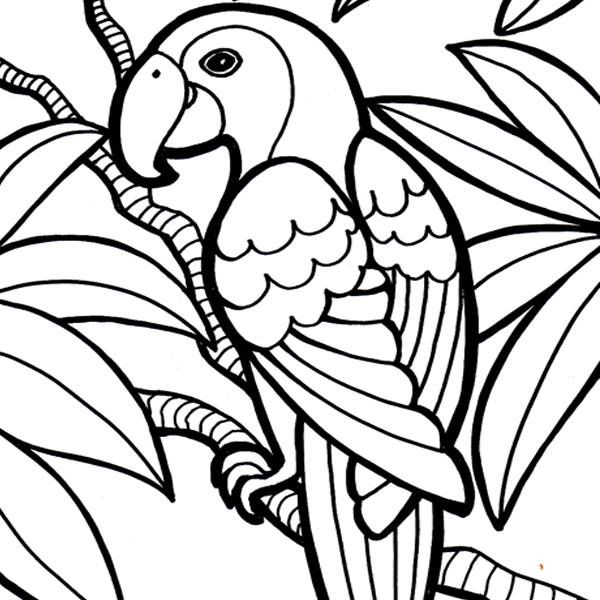 You can color this image online free by uploading it to http ...