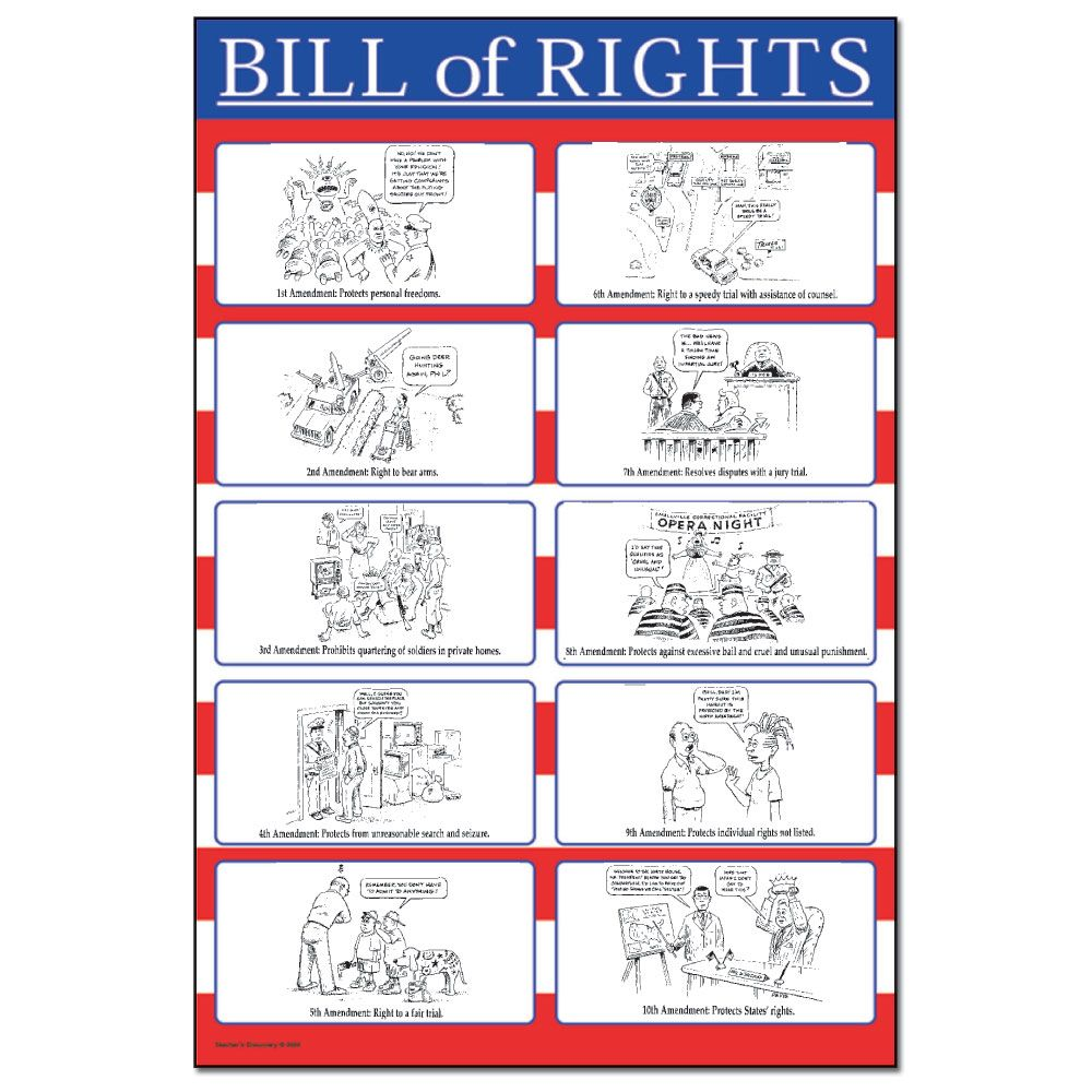 This chart provides  fun way for kids to learn the bill of rights it features cartoon drawings first amendments constitution also cool teacher stuff pinterest social rh