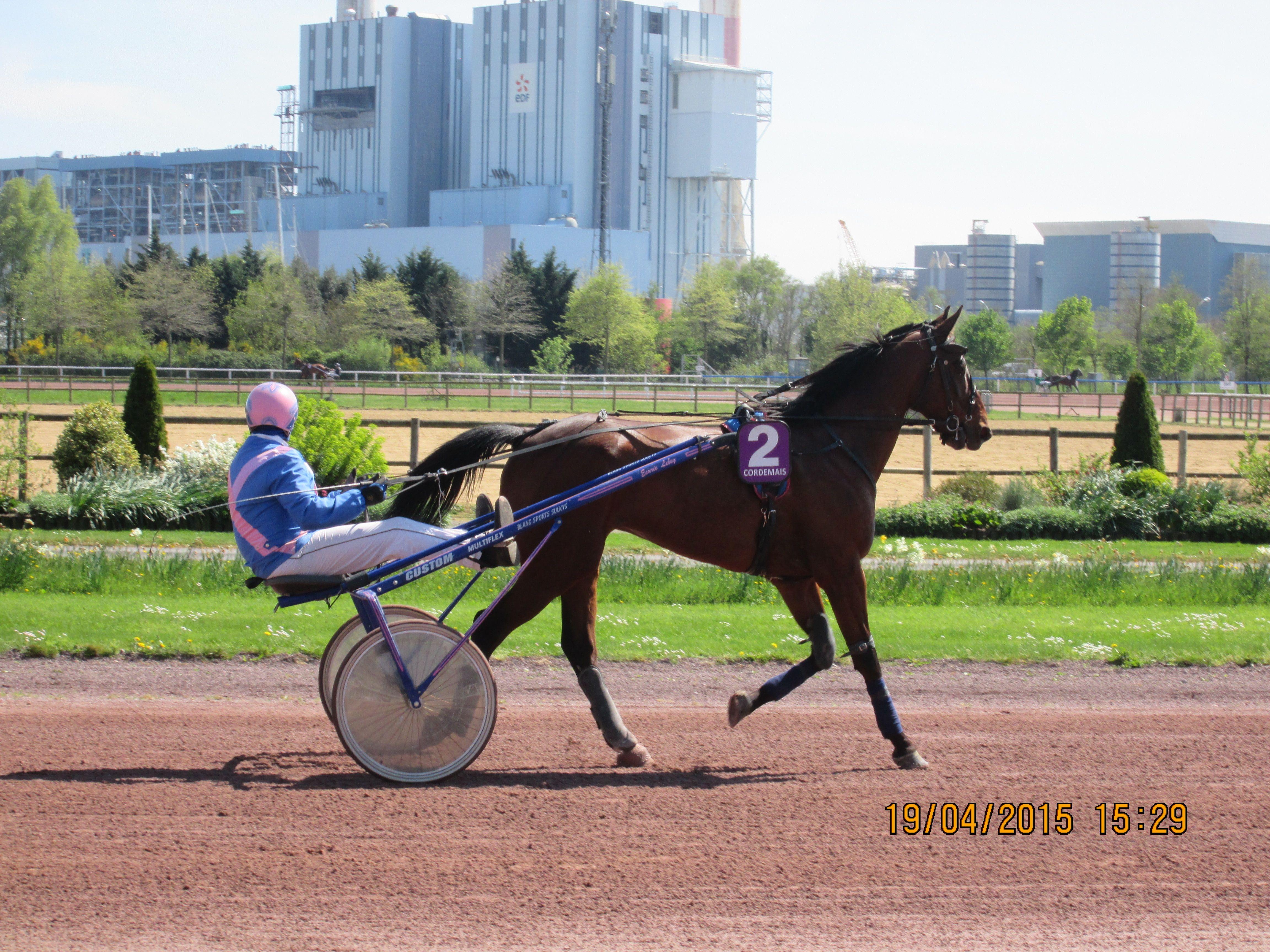 Courses Pmu Du 19 Avril 2015 A Cordemais Courses Hippiques Horses