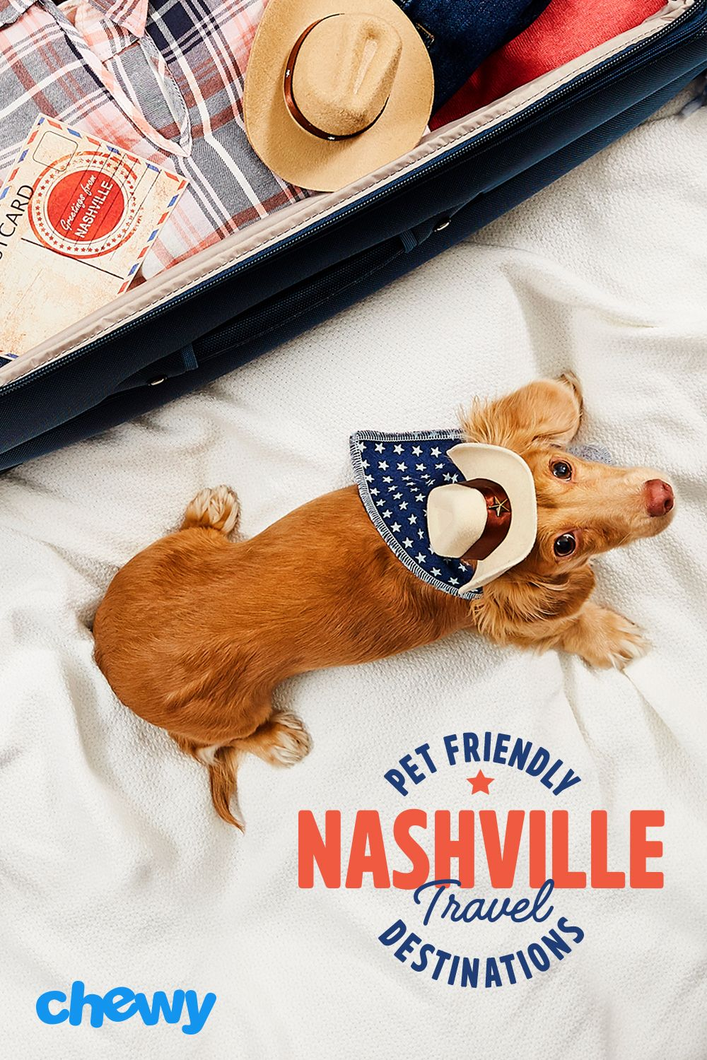 Things To Do In Nashville That Are Dog Friendly Pet Friendly