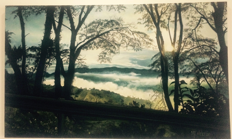 """Cuadro al oleo#paisaje Natural Realista""""El derrumbe""""Oiba-SANTANDER-Colombia#pincel#por Mariluz Calderón"""