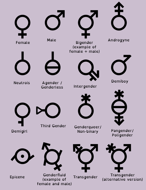 Pin On Gender