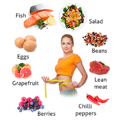 Quick Weight Loss Diet List