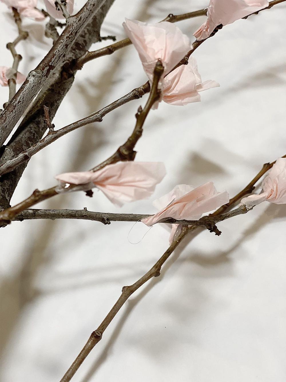Cherry Blossoms Diy In 2021 Cherry Blossom Branch Cherry Blossom Branches Diy