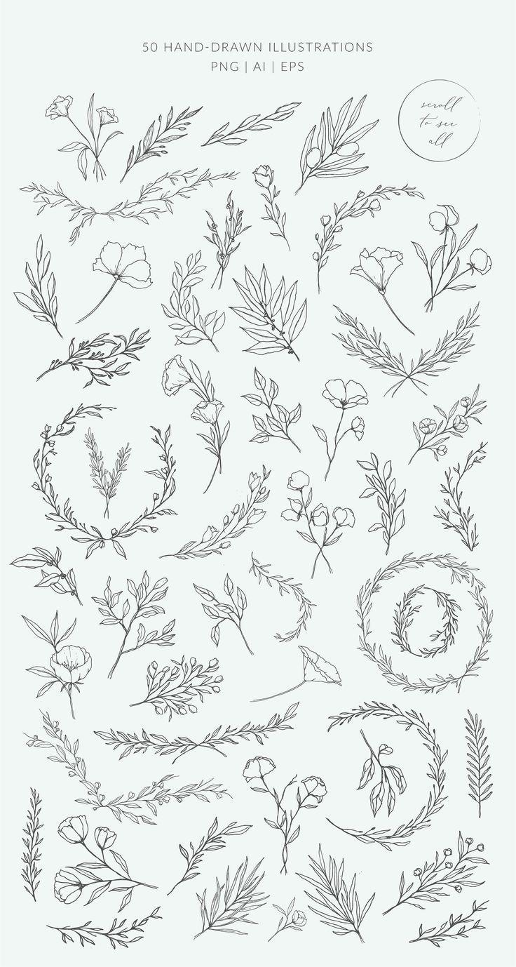 Botanical logos & illustrations by Crocus Paperi on Creative Market        Logos...
