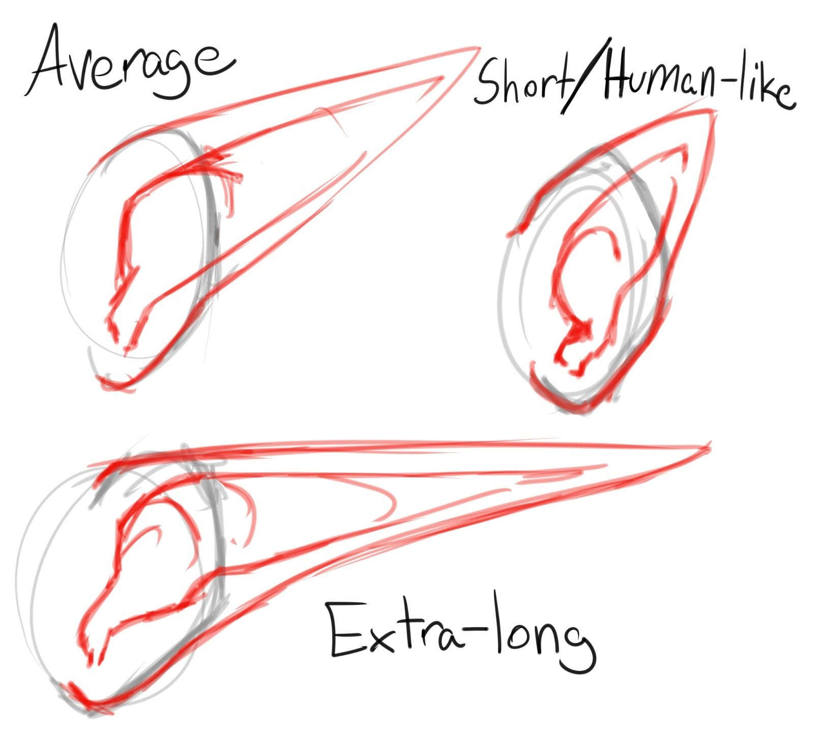 Elf Ear References How To Draw Ears Elf Drawings Elf Ears