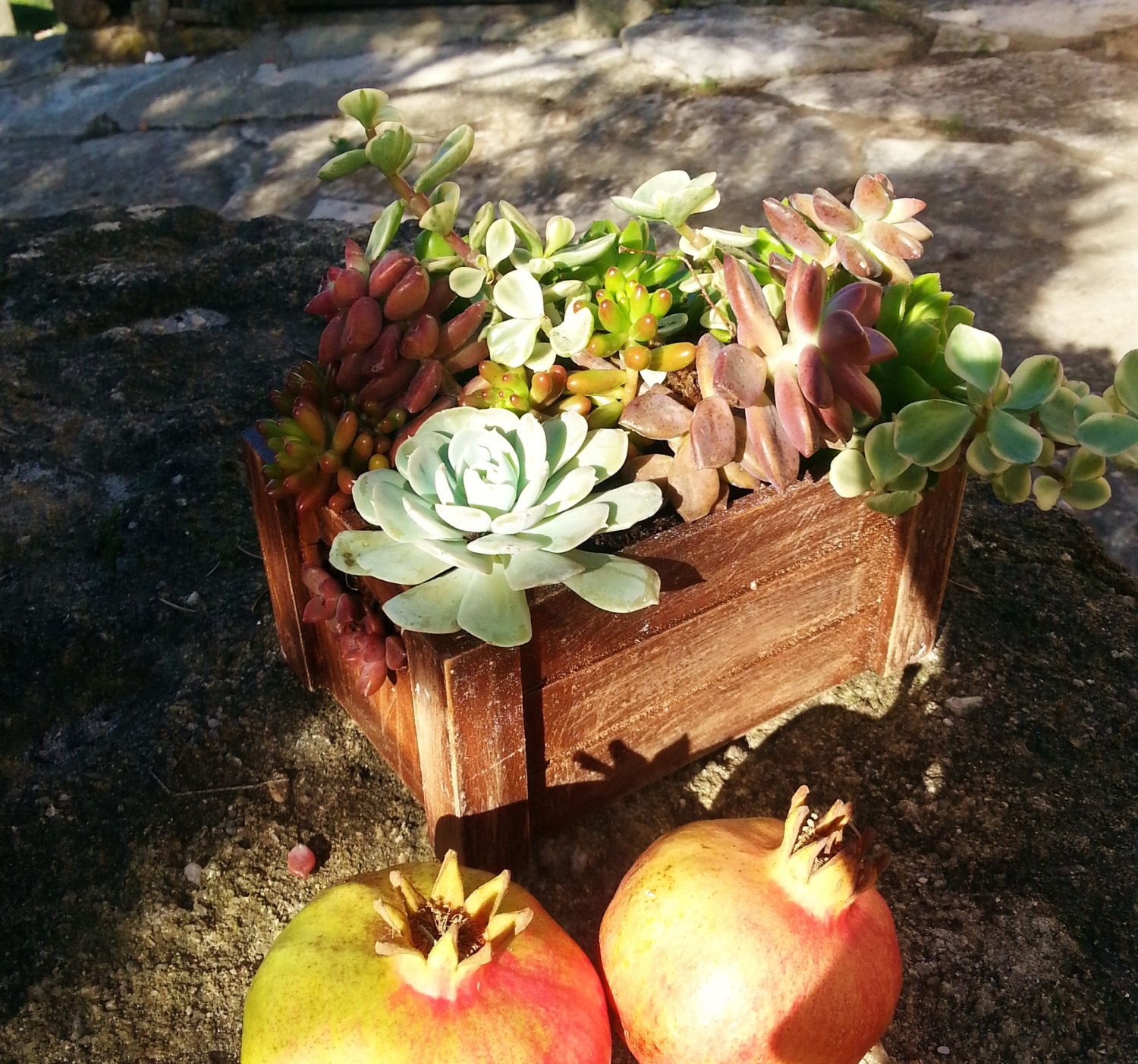 Succulent centerpieces / Wedding centerpieces by GreenPick on Etsy