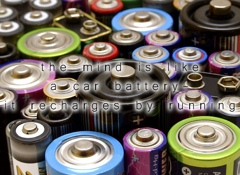 I only use a specific battery store and you can find them