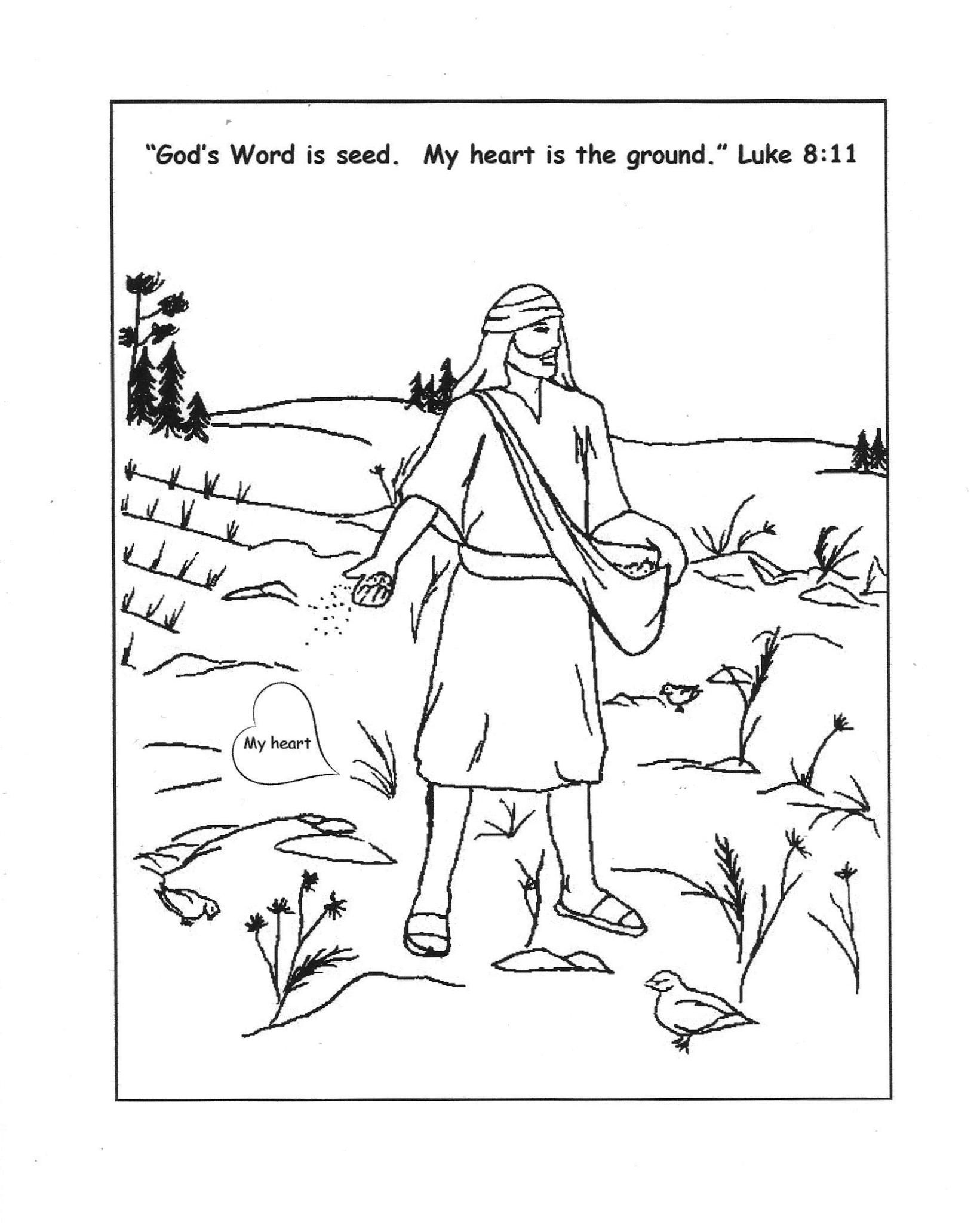 Coloring Sheet For Parable Of Good Seed Luke 8 5 Sunday School