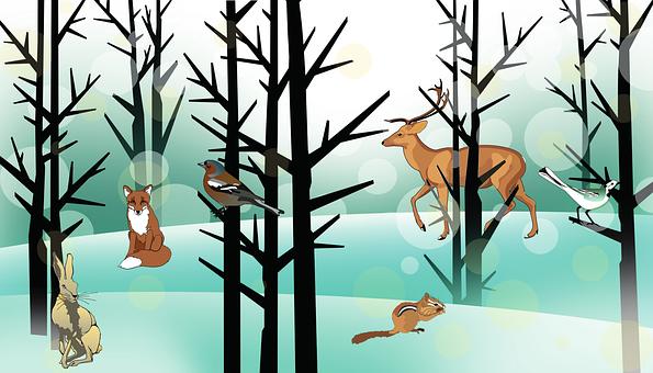 Forest, Animals, Winter, Fuchs