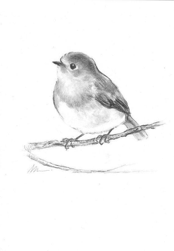 Vogel Robin URSPRÜNGLICHE Kohlezeichnung Hand gezeichnete Illustration Tierkindertagesstätte Schwarzweiss-kleines AR - #AR #gezeichnete #Hand #Illustration #Kohlezeichnung #Robin #Schwarzweisskleines #Tierkindertagesstätte #ursprüngliche #vogel #smallbirds