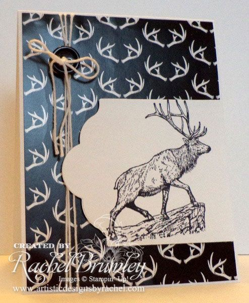 The Wilderness Awaits | Rachel Stamps
