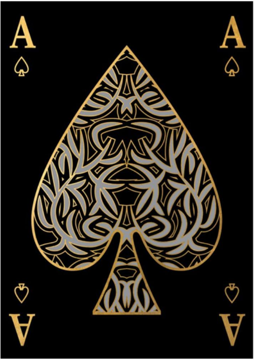 Playing Card V 24x34 Gallery Wrap In 2019