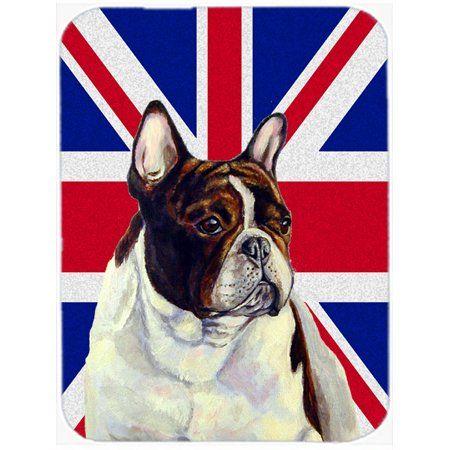 Home White Bull Terrier French Bulldog Irish Setter Dogs