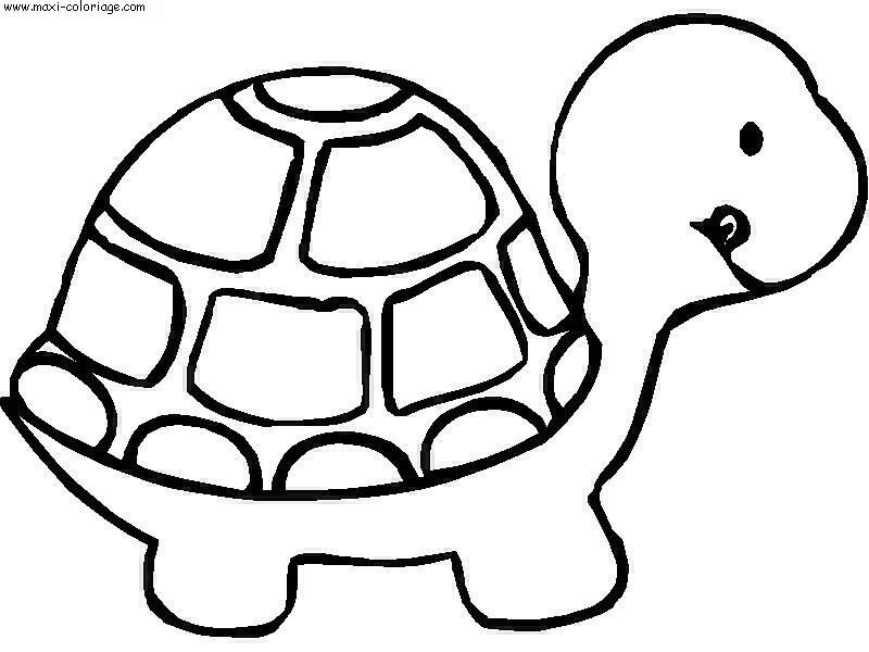 Coloriage Enfant Tortues Dessin Enfant Tortues Tortues