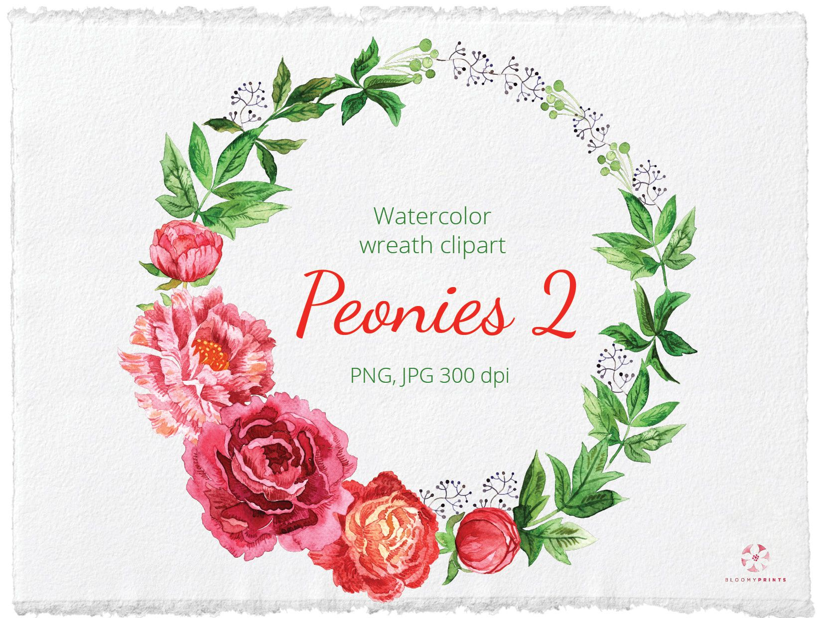 Watercolor Peonies Wreath Clipart Watercolour Flowers Wreath