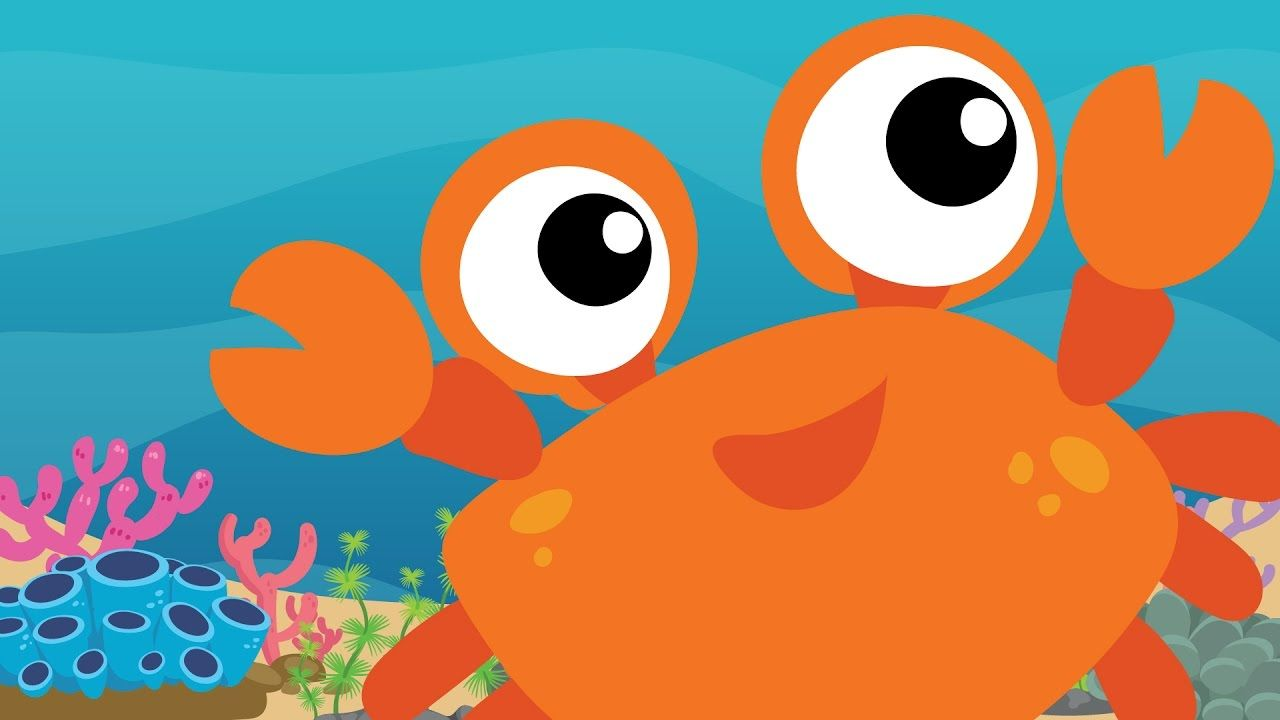 1 HOUR happy music for children with sea animals | music in 2019