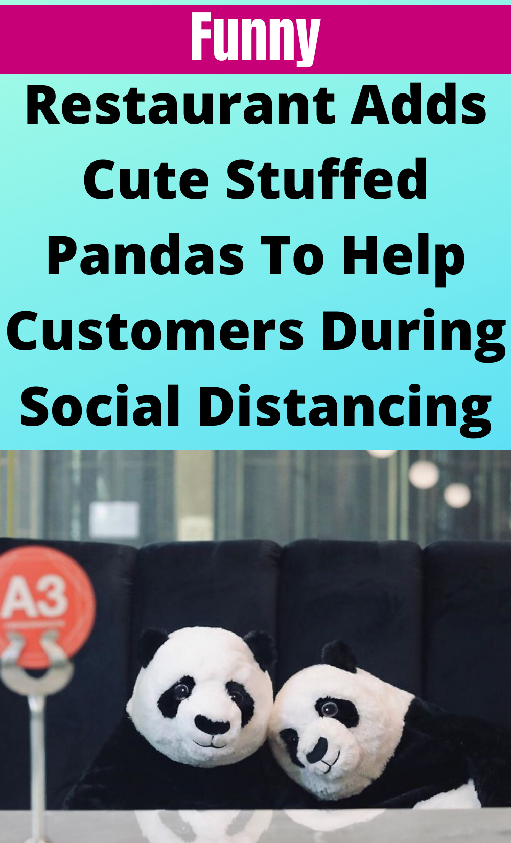 Restaurant Adds Cute Stuffed Pandas To Help Customers During Social Distancing In 2020 Funny Cute Fun