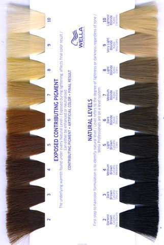 Killerstrands Hair Clinic Learn What Hair Color Levels