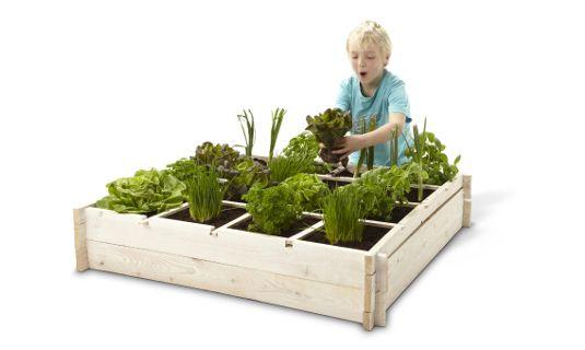 De vierkantemeter moestuin, ook leuk voor kinderen! Voor wie altijd al een tuin wilde maar enkel een terras of balkon bezit, is er nu de vierkantemeter moestuin! Plant zelf je eigen groenten, kruiden, … Niets beter en gezonder dan groenten uit je eigen tuin. Ook je kinderen beleven hier veel plezier aan, zo kunnen ze spelenderwijs ontdekken hoe alles groeit en wat er bij komt kijken om de groentjes mooi te verzorgen.