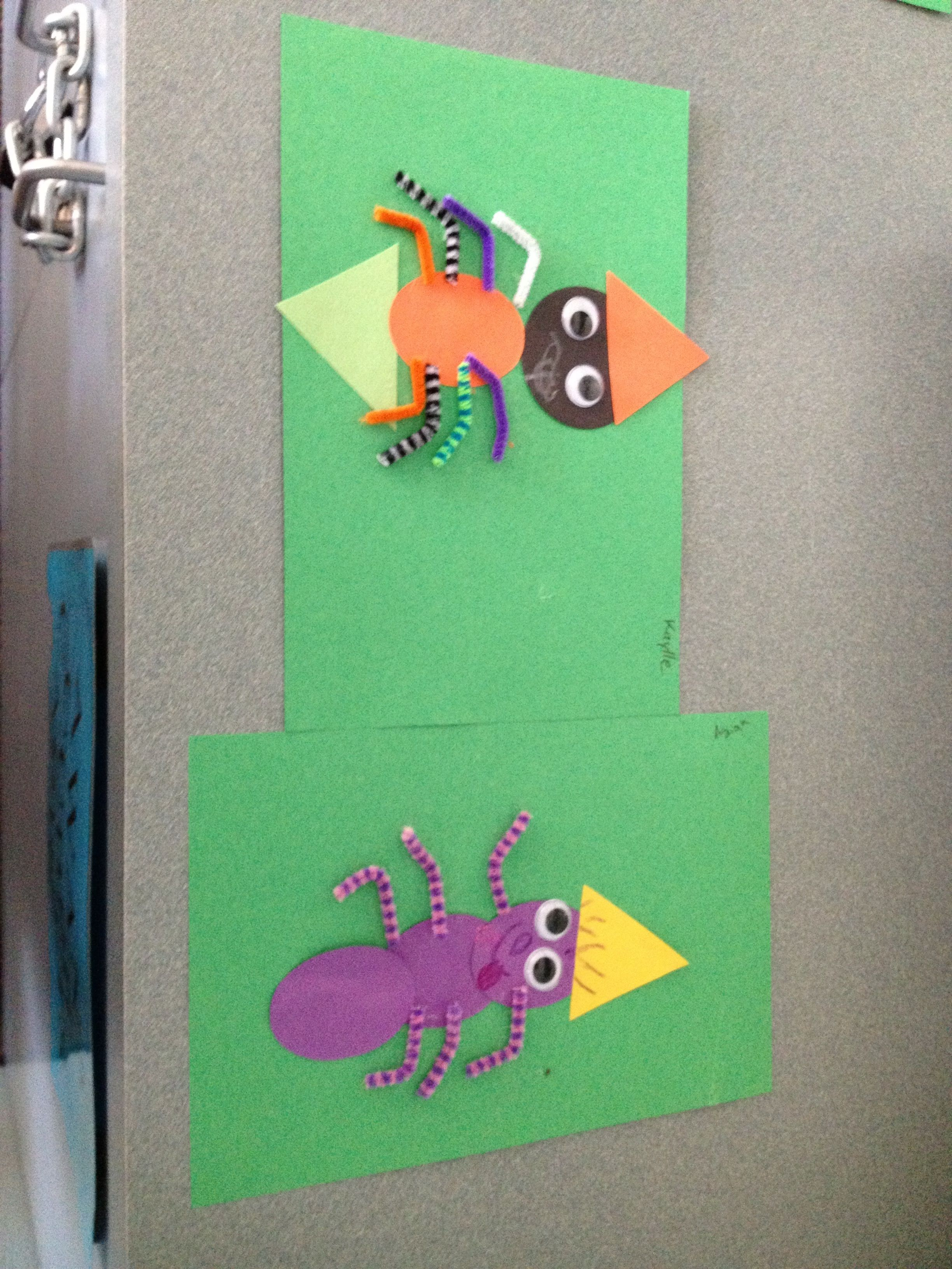 Spider Vs Insect Creations