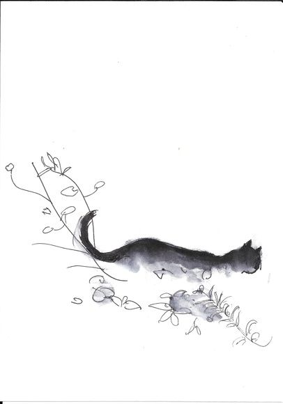 Sketches with a cat in the garden, Paris, Montmartre #5