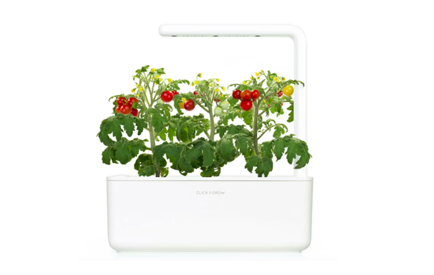 How to grow plants without soil using hydroponic planters ...