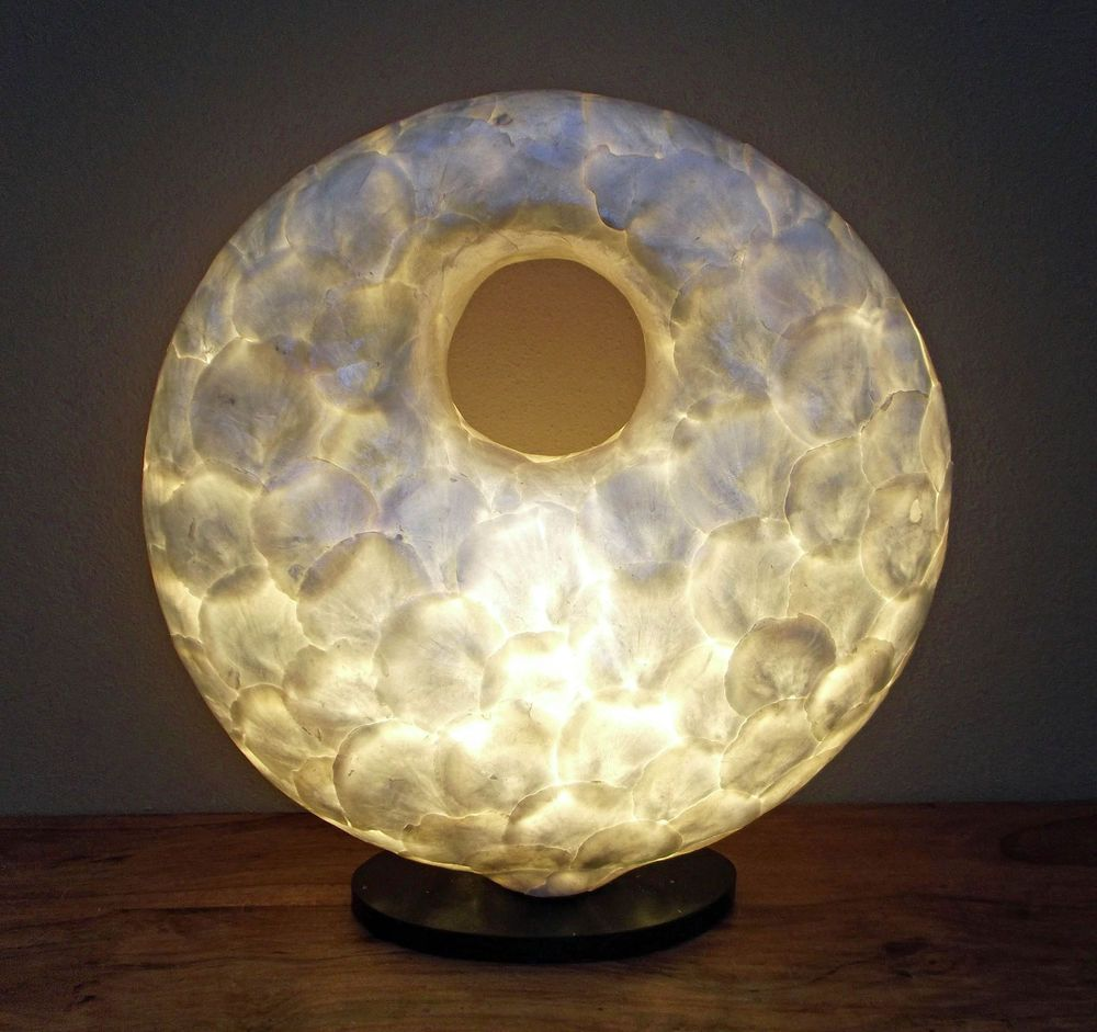 Contemporary Style Shell Sculpture Lamp Unusual Lamp Hand Made