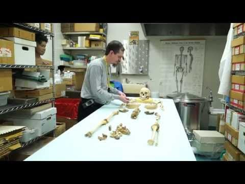 Medical Examiner Specialist  Forensic Anthropology  Youtube
