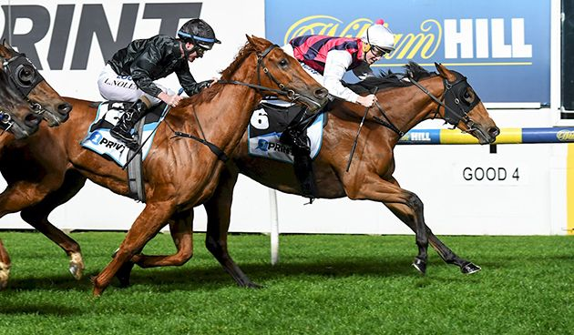 Selenia holds out Stop Making Sense in the Group 3 Scarborough Stakes (Image…
