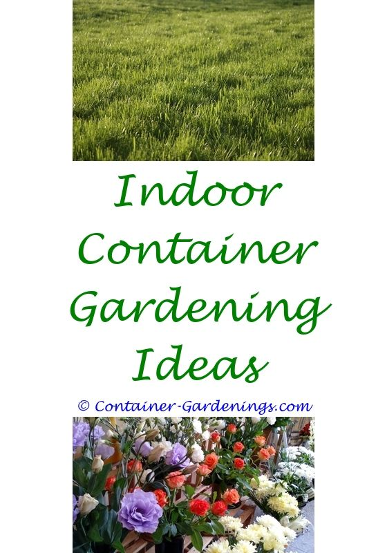 Easy Container Gardening Design Ideas on easy woodworking ideas, easy recycling ideas, easy topiary ideas, easy food ideas, easy container plant ideas, easy christmas ideas, easy permaculture ideas, flowers for flower pots ideas, easy xeriscaping ideas, easy sewing ideas, easy composting ideas, easy spring ideas, easy fall ideas, easy entertaining ideas, easy travel ideas, easy diy ideas, easy container flower gardening, easy landscaping ideas, easy garden, easy flower gardening ideas,