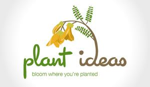 Beautiful nature inspired logo and brand design for Plant Ideas, based on Kowhai plant in New Zealand