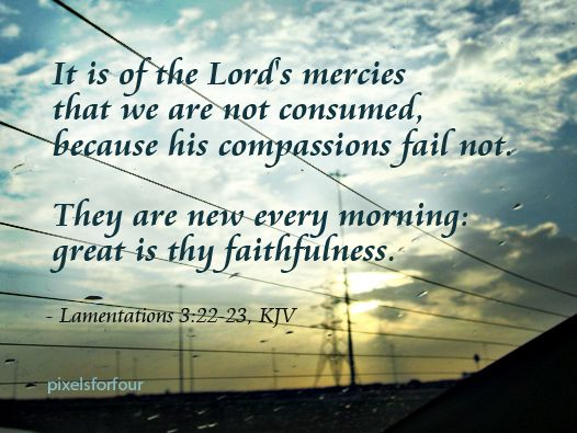 Image result for A new day kjv scripture