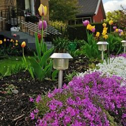 Solar Patio Lanterns Placing Lights Inside Of Your Garden Enables You To See