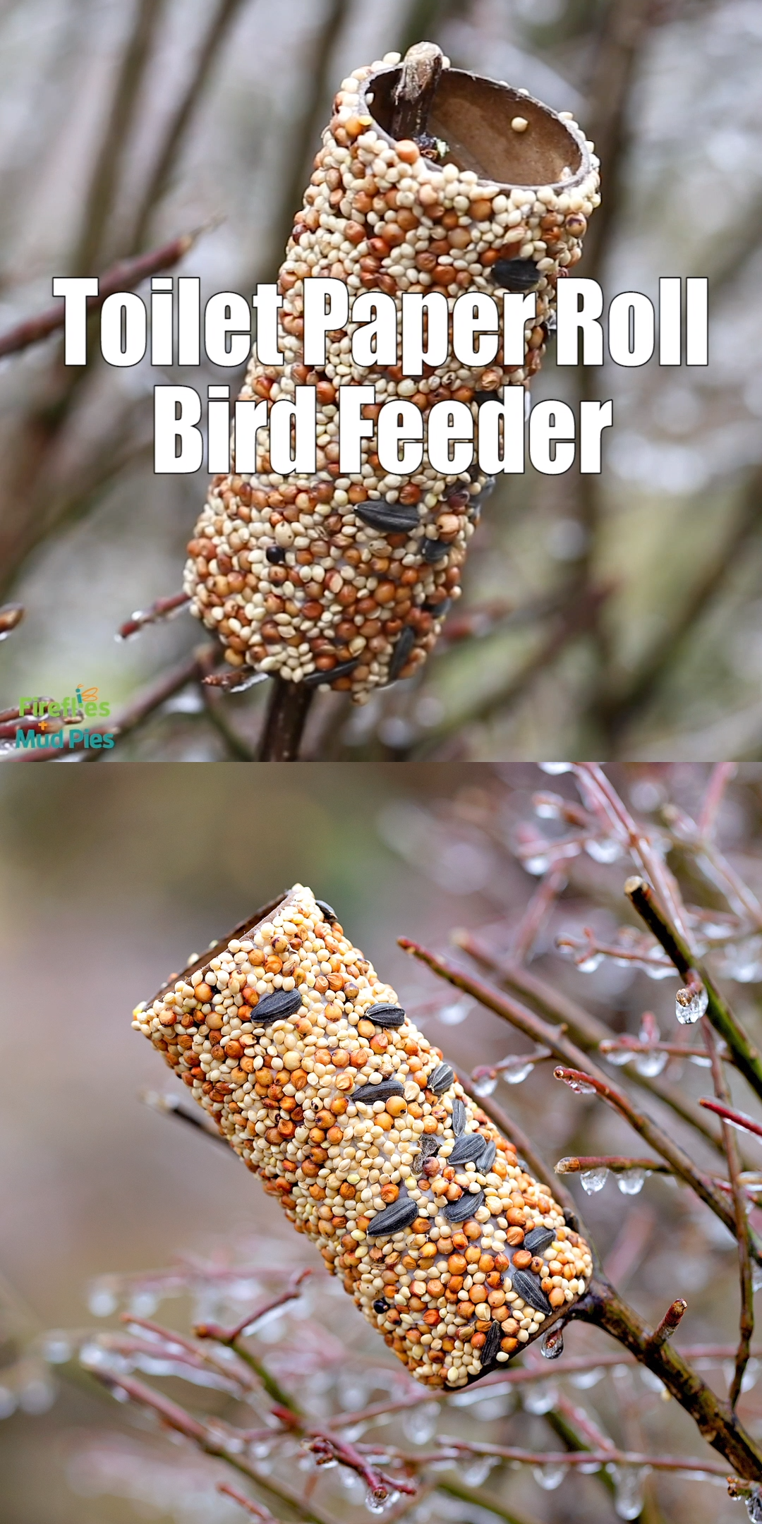 Toilet Paper Roll Bird Feeder | Fireflies and Mud Pies