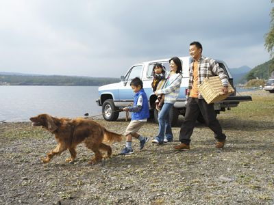 Winter Trips For You And Your Dog Dog Friends Pet Friendly Hotels Dog Friendly Holidays