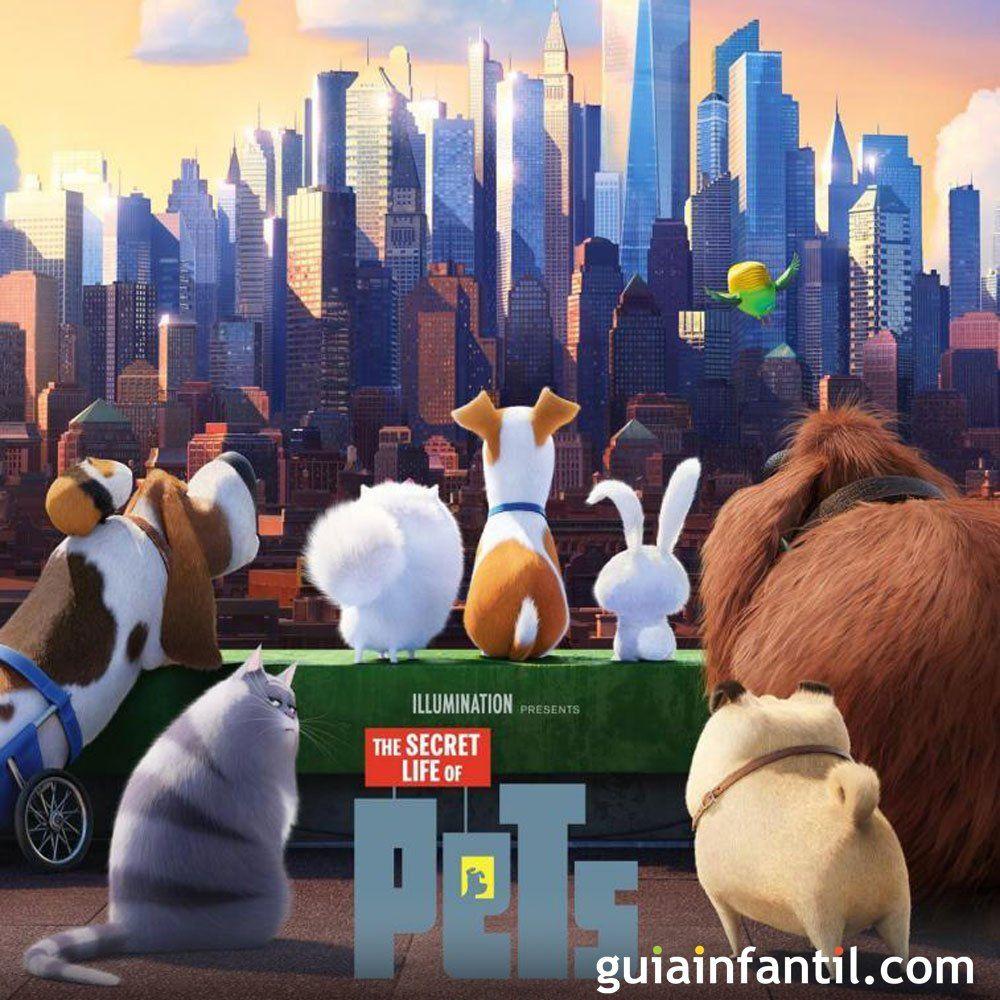 Mascotas Película De Dibujos Con Animales Para Niños Mascotas Pelicula La Vida Secreta De Tus Mascotas El Niño Pelicula