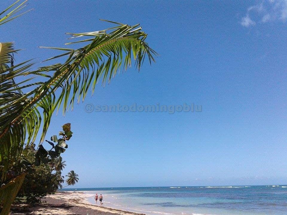 playa carolina ( las terrenas)  2016 organizzazione tour in repubblica dominicana & haiti www.santodomingoblu.com whatapp: 0018496323638