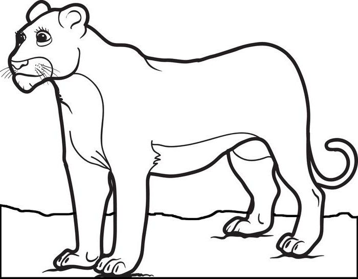 Female Lion Coloring Pages For Kids Fry Printable Lions And Tigers Coloring Pages For Kids Lion Coloring Pages Female Lion Mountain Lion