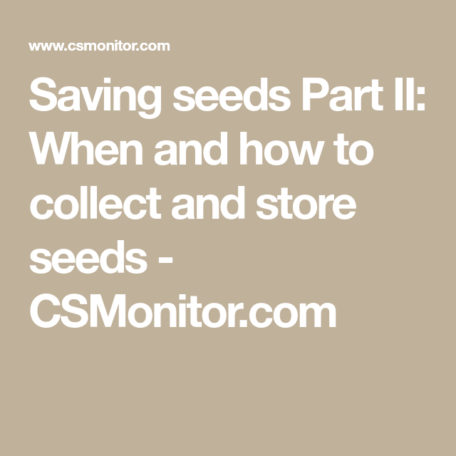 Photo of Saving seeds Part II: When and how to collect and store seeds