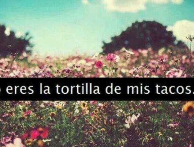Eres la tortilla de mis tacos...