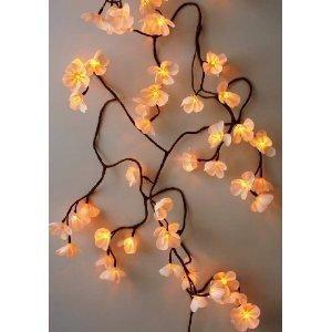 Mothers Day Frangipani Silky Flower String Light Chain - Cream  Yellow - 80 bulb: Amazon.co.uk: Kitchen  Home