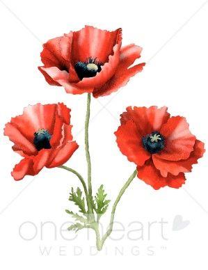 Poppy Flower Drawing Three Poppies Clipart Flower Clipart Art